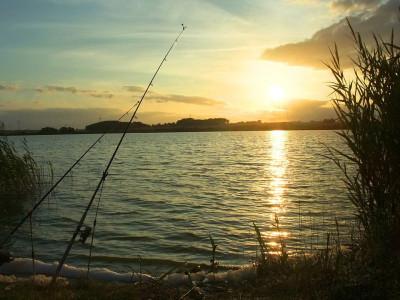 Angelruten am Wasser bei Sonnenuntergang